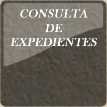 Cosulta de Expedientes