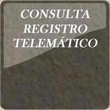 Consulta Registro Telematico