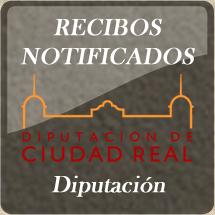Pago de Cartas de Pago emitidas por el Servicio de Recaudación de la Excma. Diputación Provincial de Ciudad Real