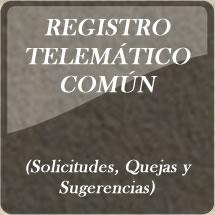 Registro Telematico comun